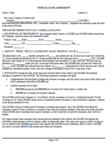 Best Rent To Own Car Contract Template  Example