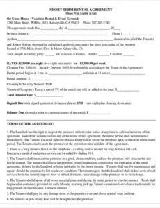 Costum Short Term Rental Contract Template Excel Example