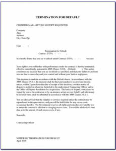 Editable Software Development Outsourcing Contract Template Doc Example