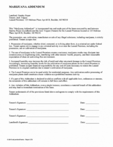 Free Trailer Rental Contract Template Excel
