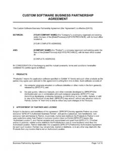 Costum Company Partnership Contract Template Doc Sample