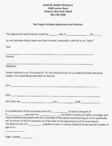 Costum Spay And Neuter Contract Template Doc Example