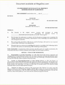 Costum Co-Ownership Contract Template Pdf