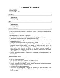 Free Fillable Contract Template Excel Example