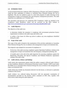 Professional Contract Audit Template Pdf