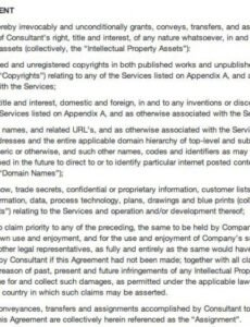 Professional Social Work Client Contract Template Pdf